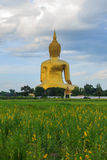 Ancient Big Buddha Image in the Field at Muang Temple , Ang Thon Royalty Free Stock Photography