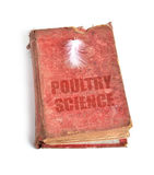 Ancient book Royalty Free Stock Image