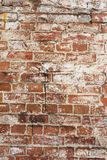 Ancient brick wall background Royalty Free Stock Image