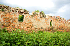 Ancient Brick Wall with Green Plants. And Cloudy Sky Above Stock Photography