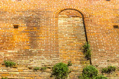 Ancient brick walls with window and green plants Stock Images