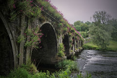 Ancient bridge over stream. Ancient Irish bridge with stream Royalty Free Stock Photography
