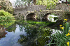 Ancient bridje on the crystalline wather in the Garden of Ninfa Royalty Free Stock Photography