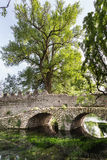 Ancient bridje on the crystalline wather in the Garden of Ninfa Stock Photography