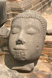 Ancient broken Buddha head with serene expresssion Royalty Free Stock Image
