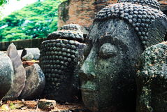 Ancient buddha statue head stock images