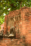 Ancient buddha statue at Mahathat temple, historic site in Ayuttaya province,Thailand. Royalty Free Stock Photos