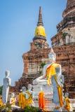 Ancient Buddha statue at Wat Yai Chaimongkol in the historical c Royalty Free Stock Image