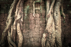 Ancient buddhist khmer temple in Angkor Wat complex, Siem Reap C Stock Images