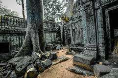 Ancient buddhist khmer temple in Angkor Wat complex, Siem Reap C Stock Photography