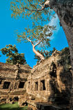 Ancient buddhist khmer temple in Angkor Wat complex, Siem Reap C Stock Photos
