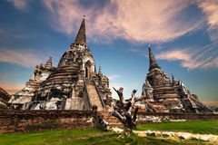 Ancient Buddhist pagoda ruins. Ayutthaya, Thailand Royalty Free Stock Photo