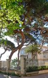 Ancient building with a green yard in the Corsican city Ajaccio Stock Photo
