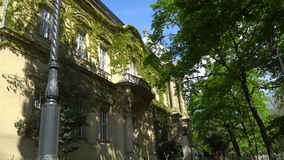 An ancient building overgrown with ivy, among green trees. On a clear day stock video