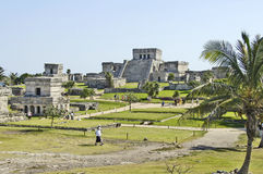 Ancient buildings built by the Mayas Royalty Free Stock Image