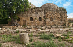 Ancient byzantine baths with big tree Stock Photos