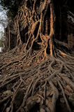 Ancient cambodian temple Royalty Free Stock Photography