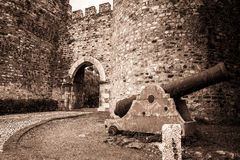 Ancient cannon and castle in Vila Viçosa town, Évora. Portugal Stock Photography