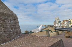 Ancient cannon protecting the coast of the dutch city of Vlissingen below a blue sky. At fall royalty free stock image