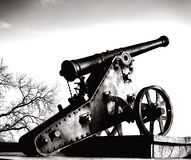 Ancient cannon on wheeled bed and tree Royalty Free Stock Photography