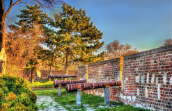 Ancient cannons at Belgrade Fortress Stock Images