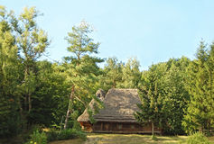 Ancient carpatian hut in forest Stock Photography