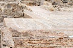 Ancient carpet Stock Images