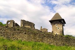 Ancient castle. Near Uzhgorod, Ukraine Stock Photo