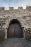 Ancient castle door Stock Image