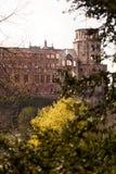 Ancient castle in Heidelberg Royalty Free Stock Photos