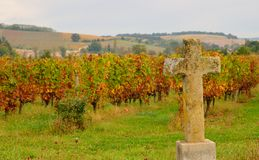 Ancient catholic cross in stone with vineyards in the background Stock Photo