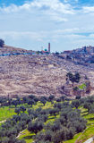 Ancient Cemetery at Olives Mountain, Jerusalem Royalty Free Stock Images