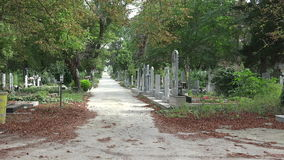 Ancient cemetery in Varna. Bulgaria. stock video footage