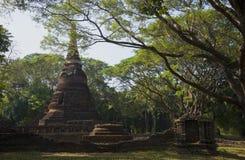 Ancient Chedi of Wat Nang Phaya in the rainforest. Thailand Stock Image