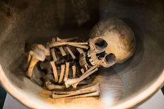 Ancient Child Skeleton. Ancient mexican child Skeleton on display in museum Royalty Free Stock Photos