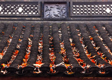 Ancient Chinese House Roof Birds Designs Autumn Leaves West Lake Royalty Free Stock Photos