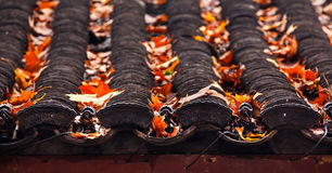 Ancient Chinese House Roof Tiles West Lake Hangzhou China Stock Photos