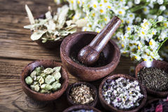 The ancient Chinese medicine Royalty Free Stock Images