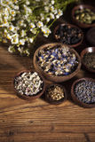 The ancient Chinese medicine Stock Images