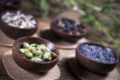 The ancient Chinese medicine Stock Photography