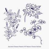 Ancient Chinese Pattern of Nature Flower Outline Stock Images