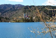 Ancient CHURCH in the Lake BLED in SLOVENIA Royalty Free Stock Photo