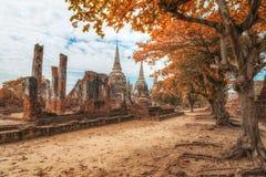 Ancient city of Ayutthaya, Thailand in autumn look. (Wat Phra Sr. View of ancient city of Ayutthaya, Thailand in autumn look. (Wat Phra Sri Sanpetch Stock Photos