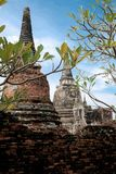 Ancient city in historic national park in Ayutthaya province. Of Thailand stock images