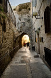 Ancient city of Jerusalem Royalty Free Stock Photography