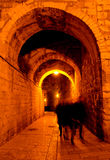Ancient city of Jerusalem at night Royalty Free Stock Images