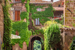 Ancient city overgrown with ivy in Tuscany Royalty Free Stock Photography