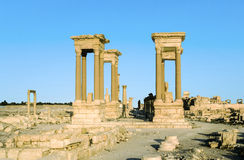 Ancient city of Palmyra. Ruins in the ancient city of Palmyra. Palmyra was an ancient Semitic city in present Homs Governorate, Syria Royalty Free Stock Image