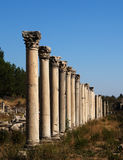 Ancient collumns in Ephesus Stock Image