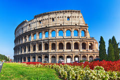 Ancient Colosseum in Rome, Italy. Ancient Colosseum with flowers in Rome, Italy Stock Photography